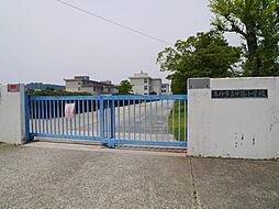 [一戸建] 兵庫県高砂市時光寺町 の賃貸【/】の外観