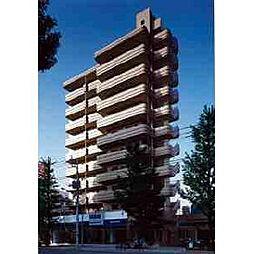 東京都杉並区善福寺1丁目の賃貸マンションの外観