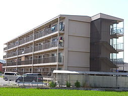 パインリーフ栗東[3階]の外観