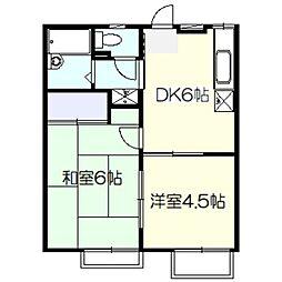 ソルトスワンプ[2階]の間取り