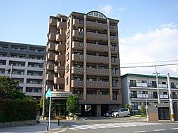 コスモ松島[7階]の外観
