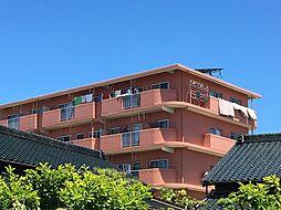 愛知県岡崎市戸崎町字野畔の賃貸マンションの外観