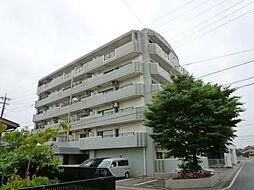 メゾン那珂川[6階]の外観