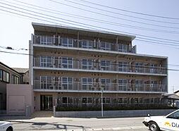 ドミール上福岡[212号室]の外観