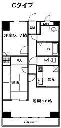 神奈川県平塚市東真土1丁目の賃貸マンションの間取り
