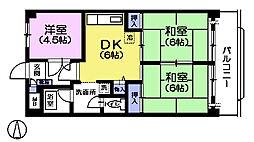 ペルリーノ武蔵関E[5階]の間取り