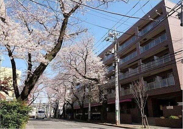 神奈川県横浜市青葉区美しが丘2丁目の賃貸マンション