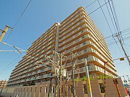 フェスティオ和白パームガーデン[11階]の外観