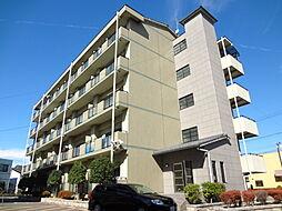 滋賀県愛知郡愛荘町中宿の賃貸マンションの外観