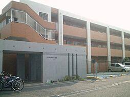 神奈川県横浜市青葉区すみよし台の賃貸マンションの外観
