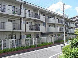 東京都練馬区春日町3丁目の賃貸マンションの外観