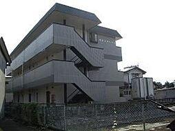 カネシマハイツ[103号室]の外観