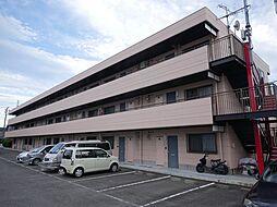 神奈川県厚木市関口の賃貸マンションの外観