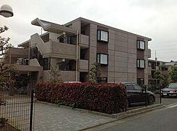 神奈川県横浜市泉区中田東4丁目の賃貸マンションの外観