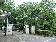 小石川植物園(徒歩2分)
