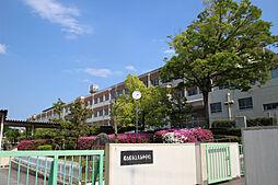 愛知県名古屋市天白区横町の賃貸マンションの外観