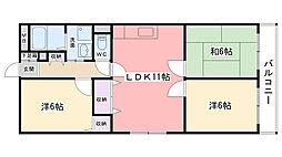 兵庫県西宮市今津山中町の賃貸マンションの間取り
