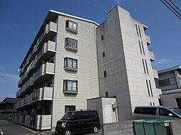サニーコート高松[203号室]の外観