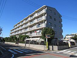 埼玉県さいたま市南区大谷口の賃貸マンションの外観