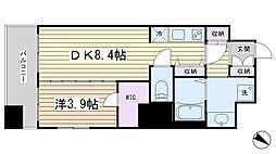 セレーナ文京千石[10階]の間取り