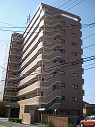 松山市東石井5丁目