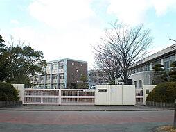 桃ヶ丘小学校 徒歩 約14分(約1100m)