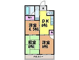 愛媛県松山市中村4丁目の賃貸マンションの間取り