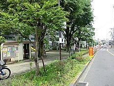周辺環境:松沢公園