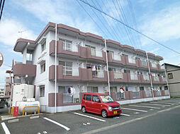 静岡県浜松市中区葵西5丁目の賃貸マンションの外観