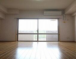Nラヴィーヌ荒江[305号室]の外観