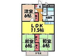 愛媛県松山市南町1丁目の賃貸マンションの間取り