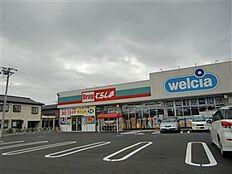 ウエルシア 土浦新田中店(3243m)