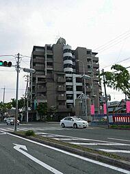 エスクドーム 島之内2 吉田7分[3階]の外観