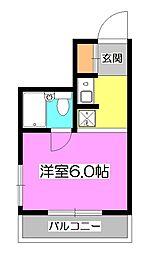 埼玉県新座市北野3丁目の賃貸アパートの間取り