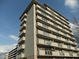 ライオンズマンション彦根(415)[4階]の外観