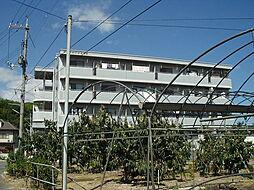 ロイヤルパレス船穂[203号室]の外観