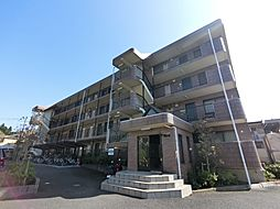 千葉県成田市幸町の賃貸マンションの外観