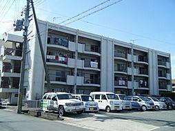 車谷住宅[2階]の外観