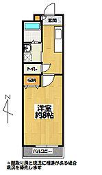 HIKARI BLDG[4階]の間取り