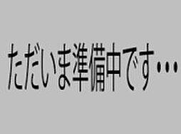 [一戸建] 大阪府堺市堺区寺地町東3丁 の賃貸【/】の外観