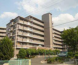 京都府宇治市宇治矢落の賃貸マンションの外観