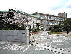 中学校姫路市立灘中学校まで783m
