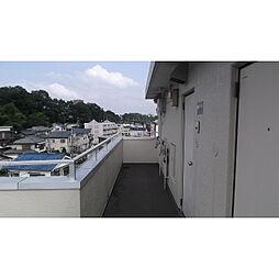 メゾンジュネス[0303号室]の外観