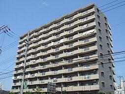 サニークレスト平野西脇[9階]の外観