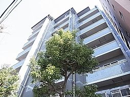 パレ綾瀬[5階]の外観