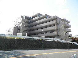 横浜市保土ケ谷区今井町