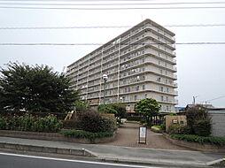 JR高崎線 鴻巣駅 徒歩32分の賃貸マンション