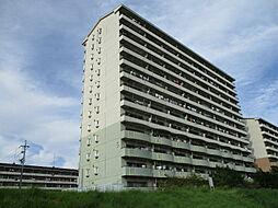 URアーバンラフレ小幡5号棟[8階]の外観
