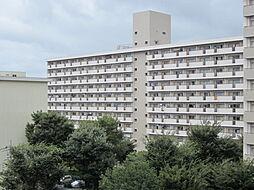 UR梨香台[6-718号室]の外観