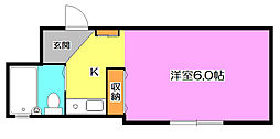 ラフェスタ松山[1階]の間取り